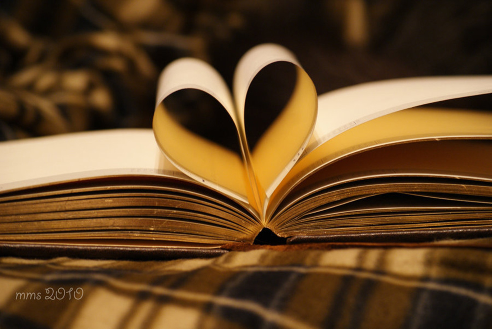 Love-the-book